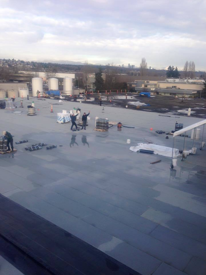Roof replacement commercial building