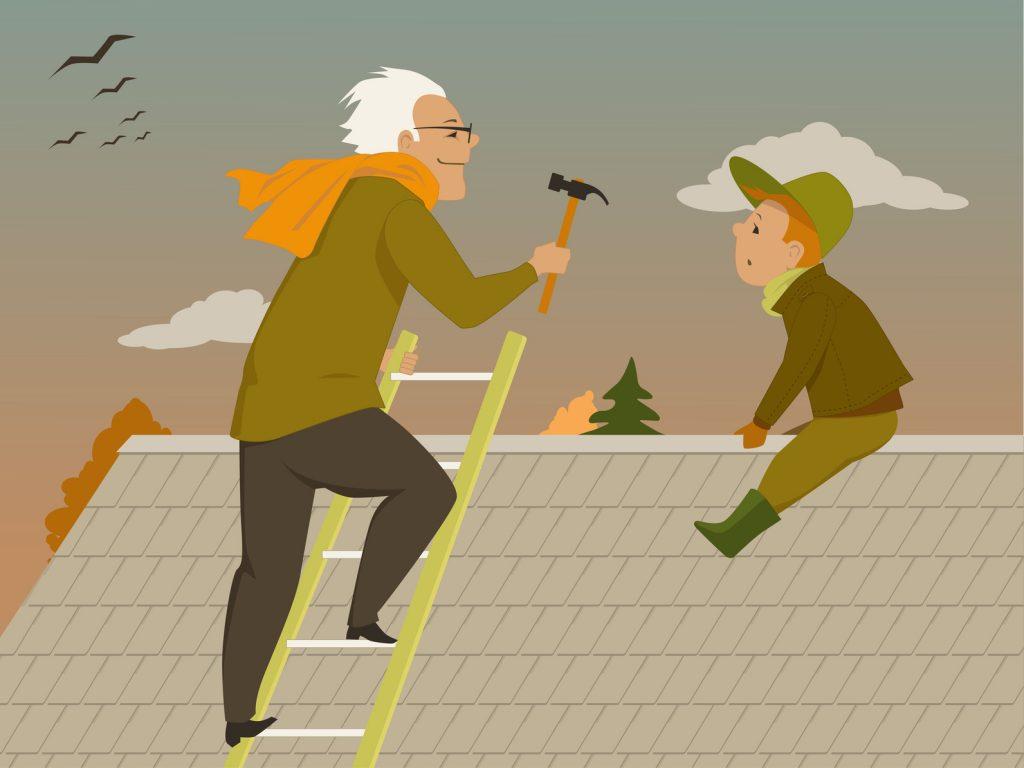 maple ridge bc roofing leak repair cartoon