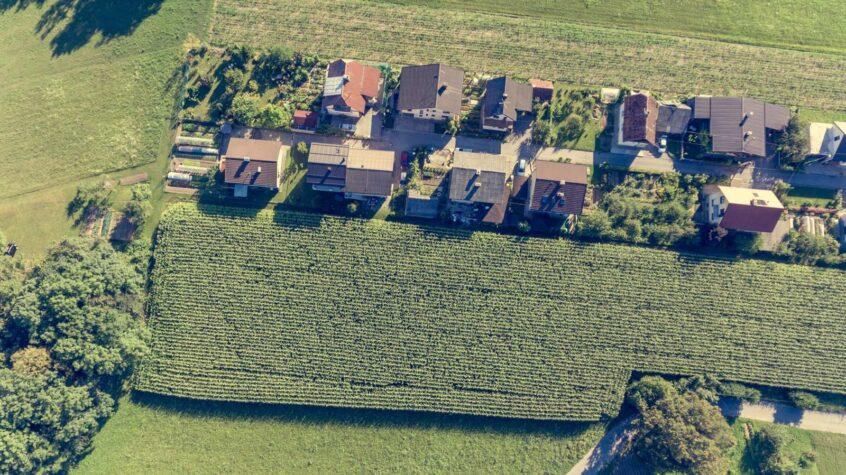 maple-ridge-roof-types