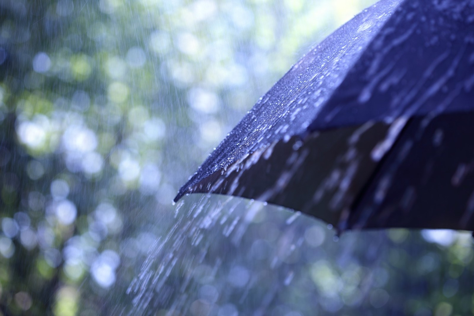 Tips to Protect Your Roof Against Vancouver Heavy Rain